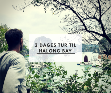 2 dages tur til Halong Bay