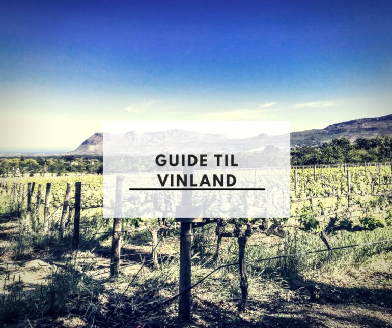 Guide til vinland