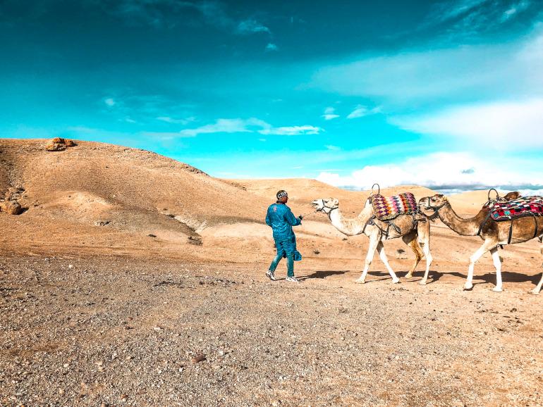 Kamelridning Agafay ørken