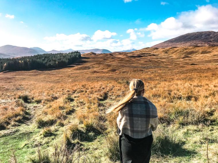 Skotsk højland Edinburgh
