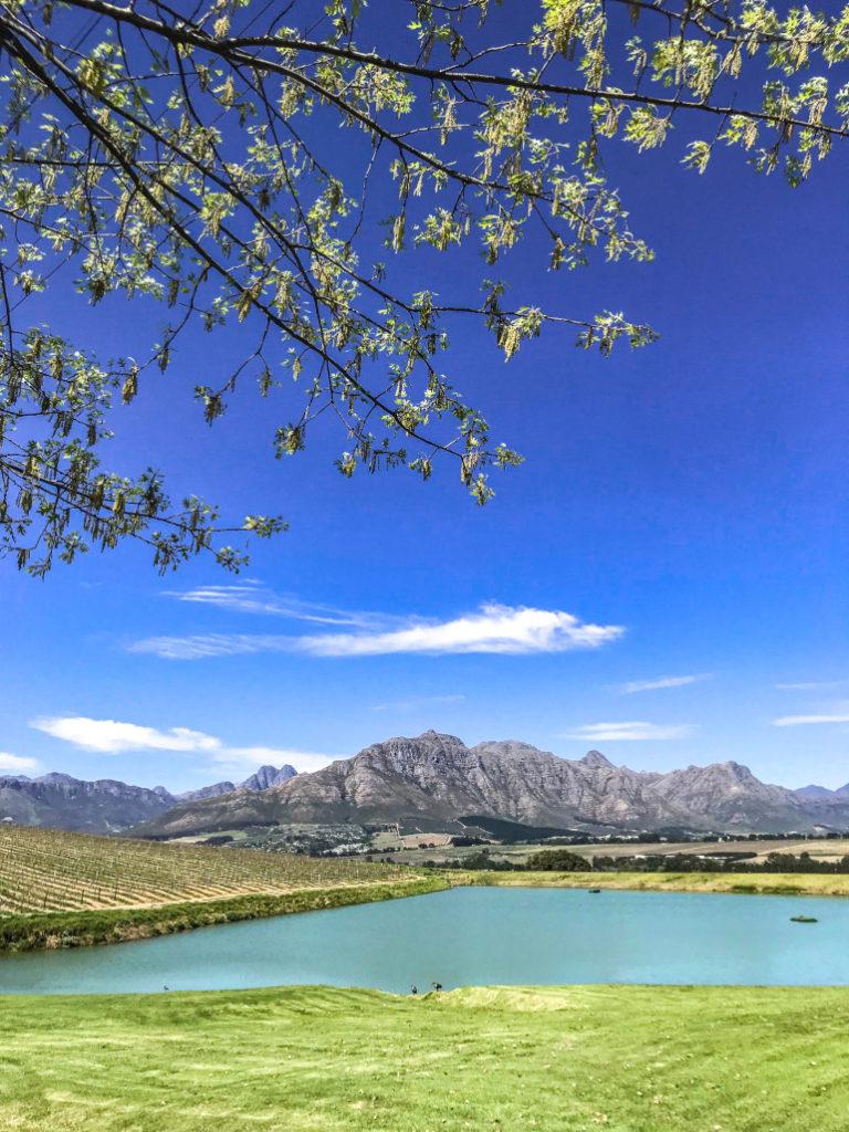 Sydafrika natur