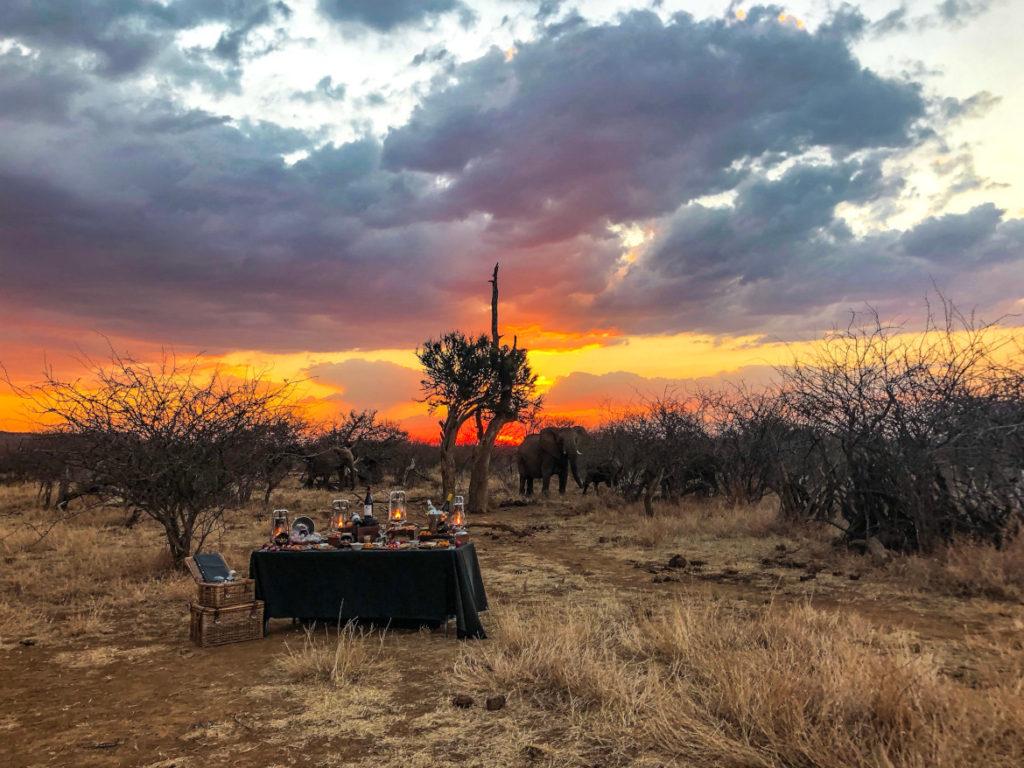 Uforglemmelig safari