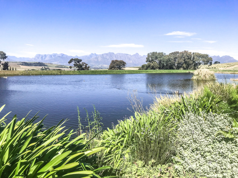 Vinland Sydafrika